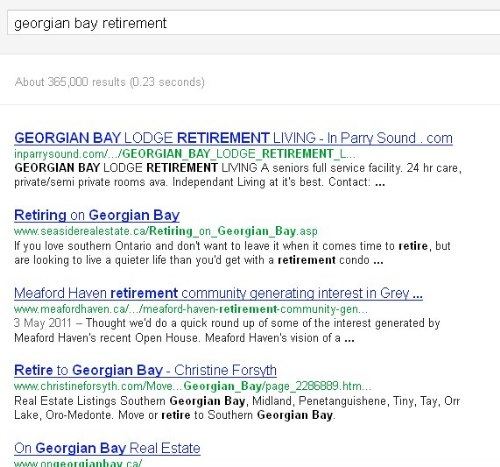 Blog drives search engine results to generate leads